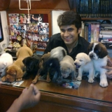 our-puppies-5