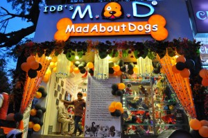 mad-store-pic-2